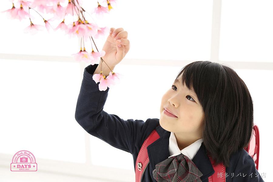 桜に手を添える新一年生