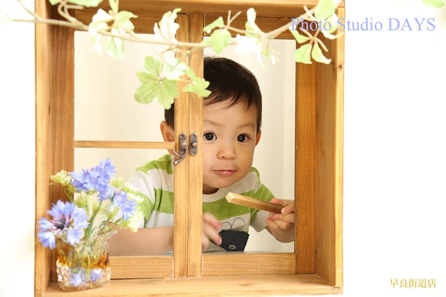 窓から顔を覗かせる男の子の写真